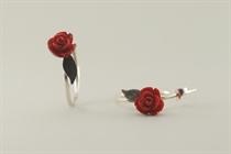 Εικόνα της τριαντάφυλλα