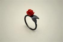 Εικόνα της Κοραλένια τριαντάφυλλα