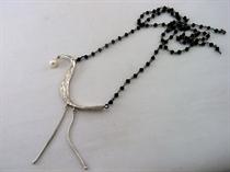 Εικόνα της Ερωδιός με σπινέλιο